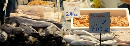 Fish market_cut